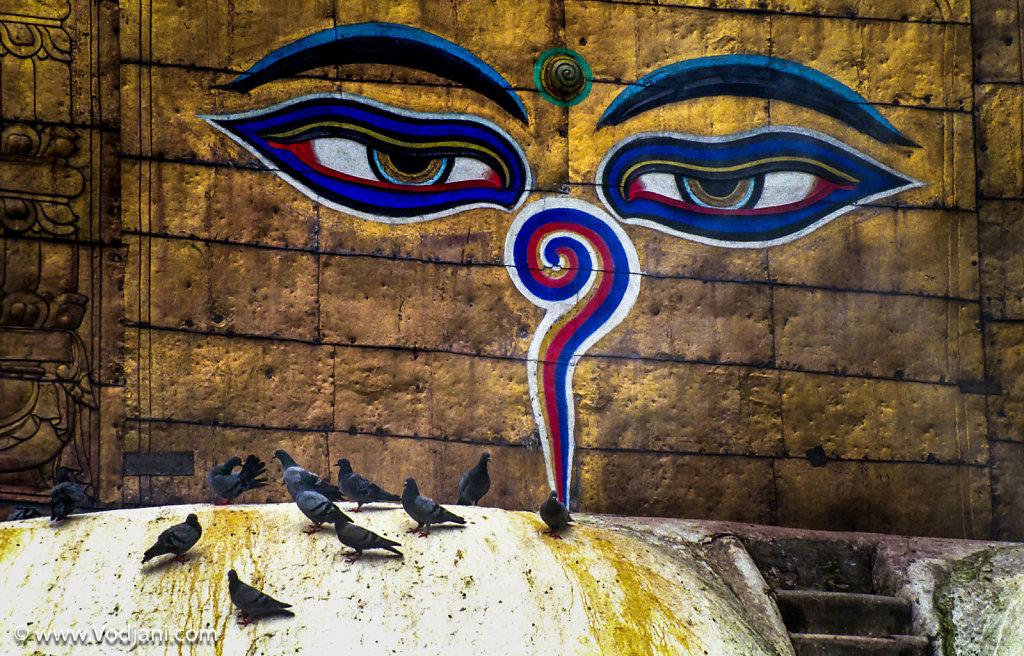 Tibet | Nepal | India